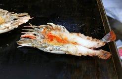 Camarão de rio gigante grelhado imagens de stock