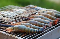 Camarão grelhado Foto de Stock
