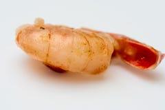 Camarão isolado no fundo branco Imagens de Stock