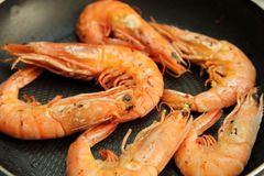 Camarão ou camarão grelhado Foto de Stock