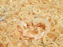 Camarão secado Fotos de Stock Royalty Free