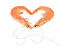 Camarón - corazón Imagen de archivo libre de regalías
