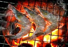 Camarón de la parrilla en fuego caliente del carbón de leña Foto de archivo