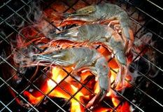 Camarón de la parrilla en fuego caliente del carbón de leña Imagen de archivo libre de regalías