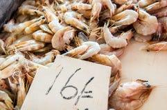 Camarón para la venta en el mercado abierto de los mariscos Imagen de archivo libre de regalías