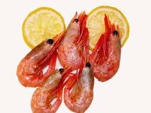 Camarões & limão Imagem de Stock