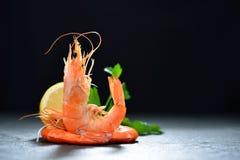 Camarões cozinhados, camarões Fotografia de Stock