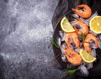 Camarões dos camarões com limão e alecrins Fotografia de Stock