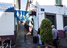 Camara de罗伯斯是一个渔村在市丰沙尔附近并且有某些最高的峭壁在世界上 图库摄影