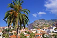 Camara de罗伯斯,马德拉岛,葡萄牙 免版税图库摄影