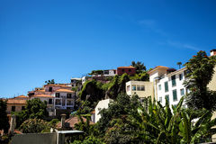 Camara de Lobos is a fishing village near the city of Funchal and has some of the highest cliffs in the world Royalty Free Stock Photos