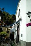 Camara de Lobos is a fishing village is near the city of Funchal Royalty Free Stock Photos