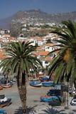 camara De Lobos Madeira Zdjęcie Royalty Free