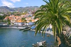 Camara De Lobos, madery wyspa, Portugalia zdjęcie royalty free