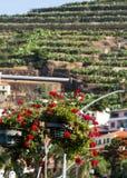 Camara de Lobos - traditioneel die visserijdorp, vijf kilometers van Funchal op Madera wordt gesitueerd Stock Fotografie
