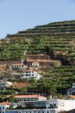 Camara de Lobos - traditionelles Fischerdorf, aufgestellt fünf Kilometer von Funchal auf Madeira Lizenzfreie Stockfotos