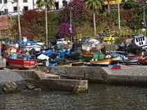 Camara de Lobos un paesino di pescatori vicino alla città di Funchal ed ha alcune di più alte scogliere nel mondo Fotografia Stock Libera da Diritti