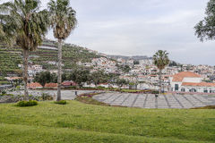 Camara de Lobos Royalty Free Stock Images
