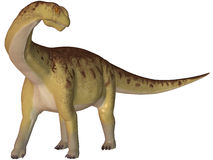 Camarasaurus-3D Dinosaur Royalty Free Stock Photos