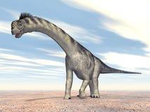 Camarasaurus del dinosaurio Foto de archivo
