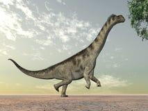 Camarasaurus del dinosaurio Fotografía de archivo