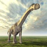 Camarasaurus del dinosauro Fotografia Stock Libera da Diritti