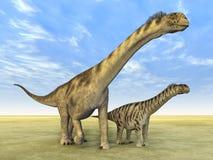 Camarasaurus do dinossauro Imagem de Stock