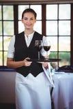 Camarera sonriente que sostiene una bandeja con los vidrios de vino rojo Imagen de archivo libre de regalías