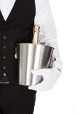 Camarero Holding un refrigerador de vino Imagen de archivo