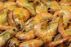 Camarões frescos no mercado Imagens de Stock
