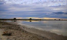 Camargue自然公园,罗讷,法国 库存图片