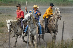 Camargue cowboys after Bull racing Royalty Free Stock Image