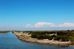 The Camargue Delta, France. stock photography