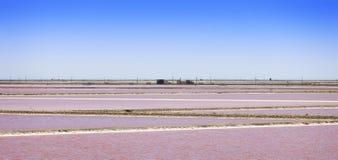 Camargue, Giraud pink salt flats landscape. Rhone, Provence, Fra Stock Photography