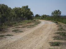 Camargue landscape at Aigues Mortes, France Royalty Free Stock Photos
