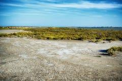 Camargue-Landschaft lizenzfreie stockfotografie