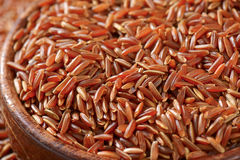 Camargue red rice Stock Images