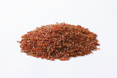 Camargue red rice Royalty Free Stock Photo