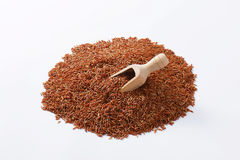 Camargue red rice Royalty Free Stock Image