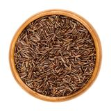 Camargue red rice grains in wooden bowl Royalty Free Stock Photography