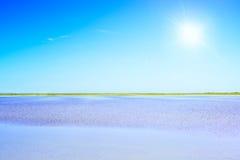 Camargue Rhone Park  lagoon. Provence, France. Stock Image