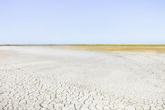 Camargue Rhone Park, soil drought. Provence,France Royalty Free Stock Photo