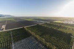 Camarillo Kalifornia Rolni pola i sady Powietrzni zdjęcie stock