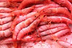 Camarão congelado no mercado do alimento Imagem de Stock Royalty Free