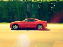 Camaro edita Fotografia de Stock