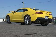 Camaro Stock Photography