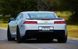 Camaro ZL1 stock images