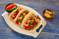 Camaron shrimp tacos mexican food on blue Stock Image
