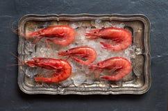 Camarones crudos en el hielo Imagen de archivo