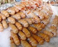Camarones en mercado Fotos de archivo libres de regalías